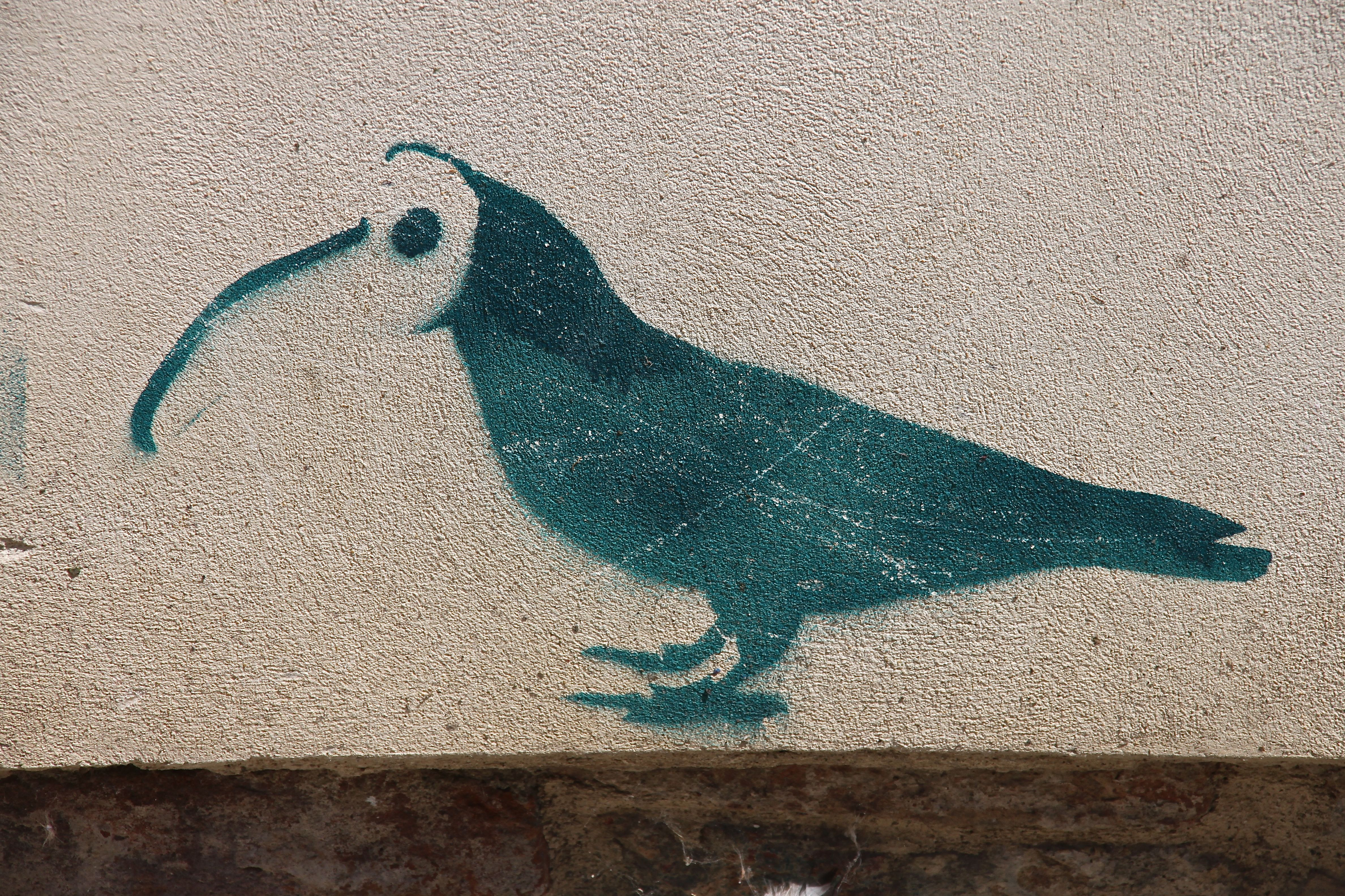 A crow wearing the plague doctor's mask, Venice