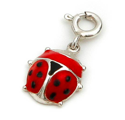 A red ladybird (ladybug) charm wards off evil spirits