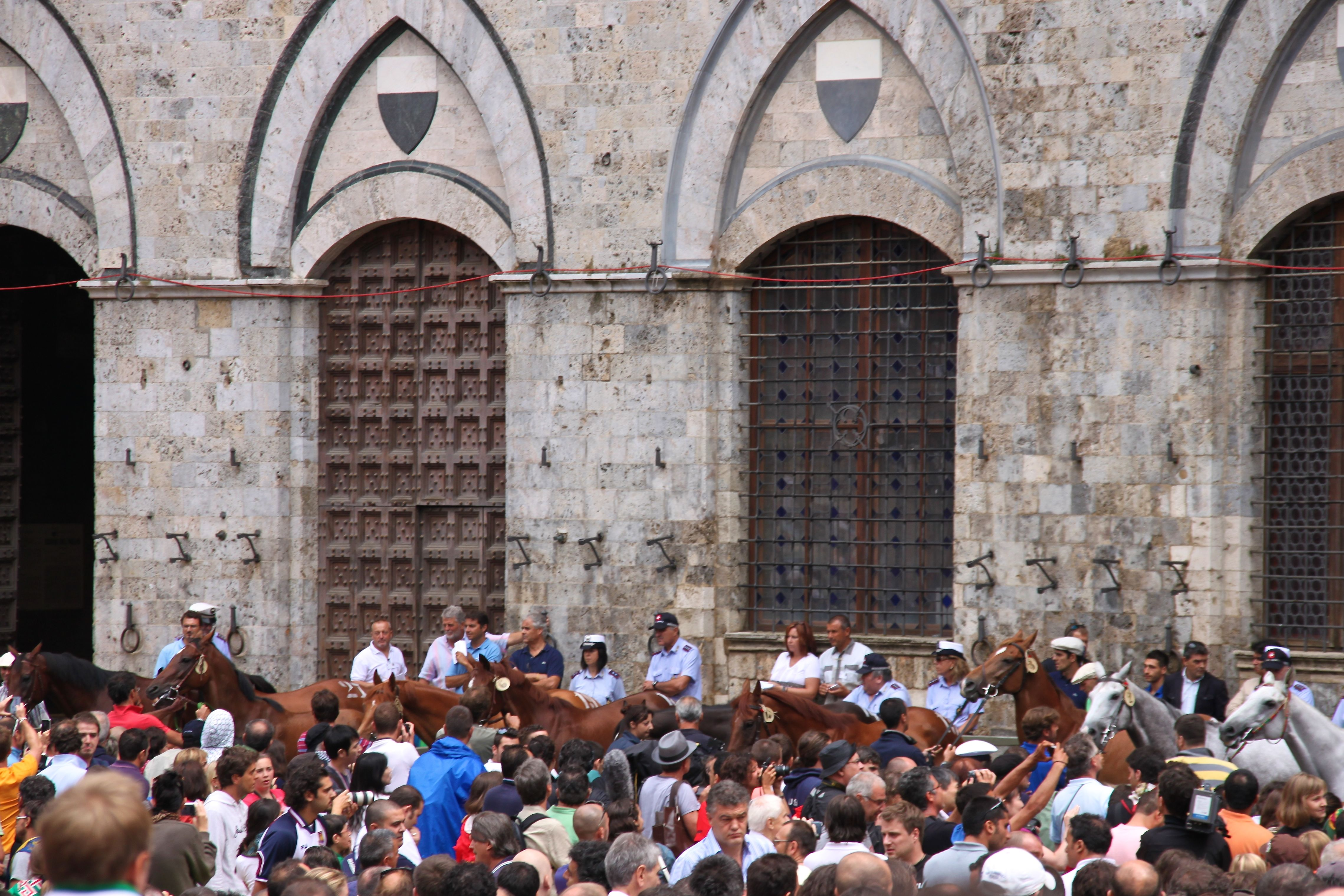 Photo of the Palio racehorses waiting in Siena's Piazza del Campo to be assigned to the contradas by lottery