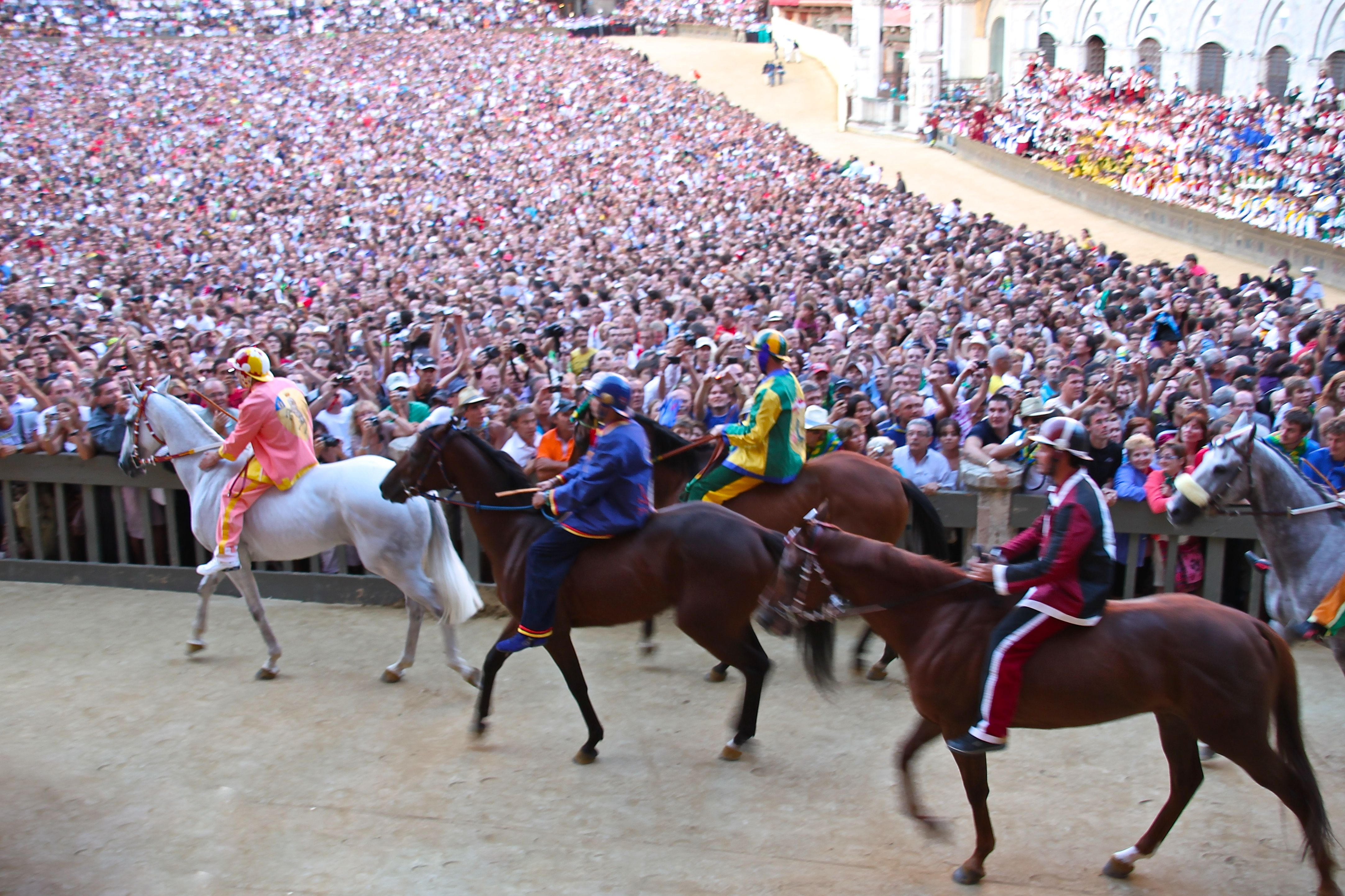 Palio racehorses and their jockeys enter the Piazza del Campo in Siena watched by over 40,000 spectators