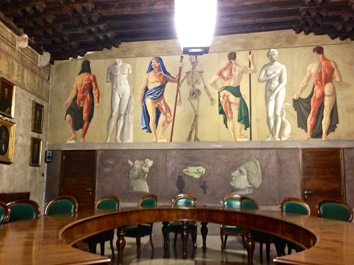 Inside Padua's university, the birthplace of human anatomy