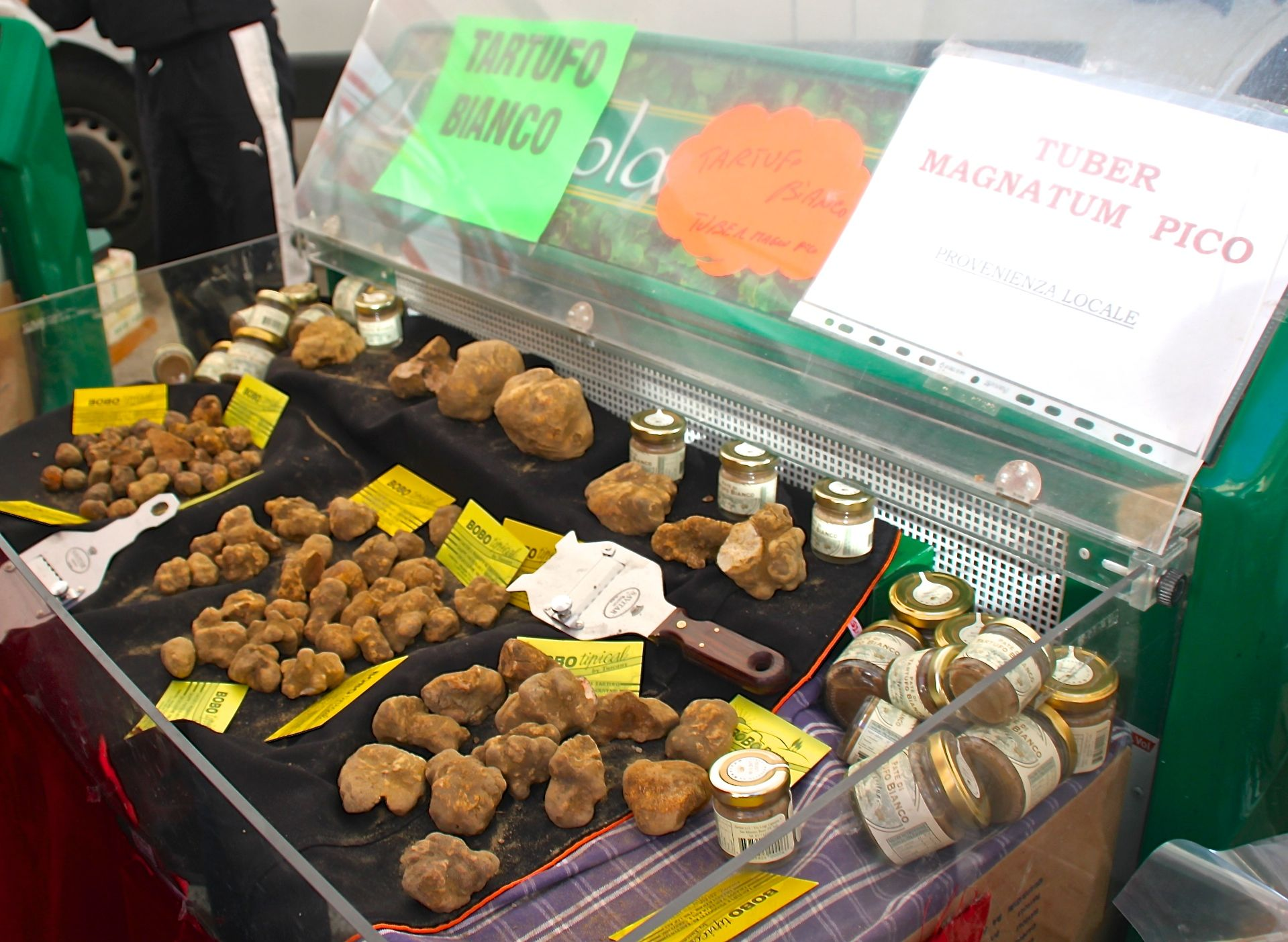 White truffles come in all shapes and sizes at the San Miniato truffle festival