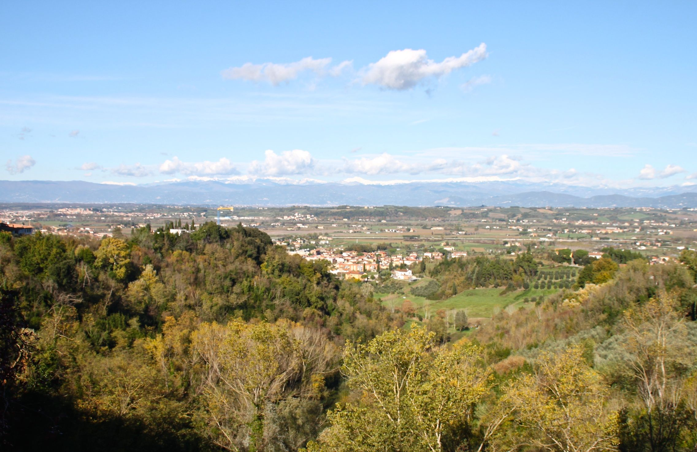 The shaded woods of San Miniato provide the perfect environment for white truffles to thrive