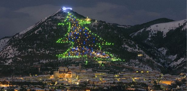 Guinness world record largest christmas tree in Gubbio